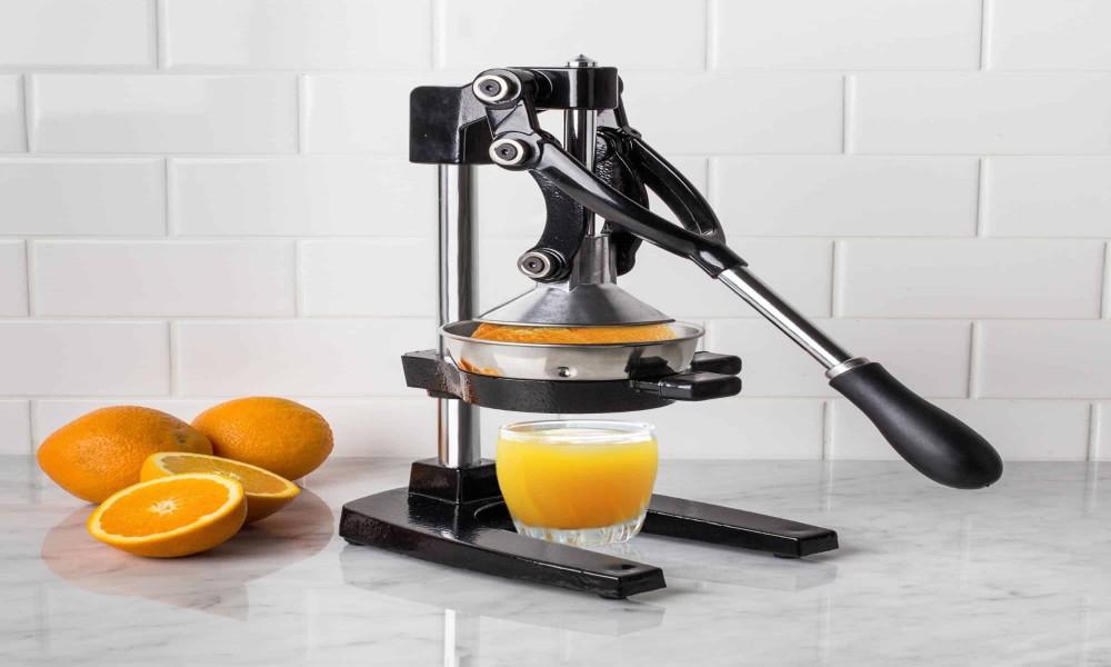Best Citrus Juicer Reviews